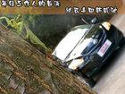 年轻工作人的首选-试驾丰田新威驰